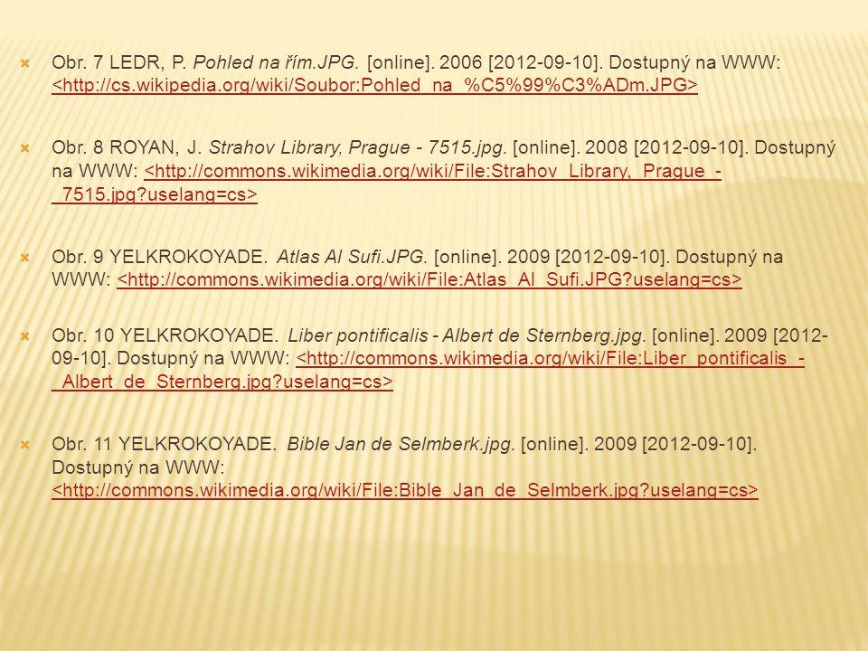 Obr. 7 LEDR, P. Pohled na řím. JPG. [online]. 2006 [2012-09-10]